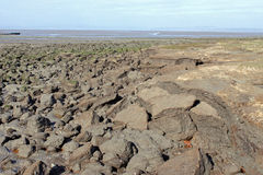 Coastal erosion at Hest Bank on Morecambe Bay. Stock Photos