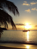 Coastal evening scenery at Guadeloupe Stock Image