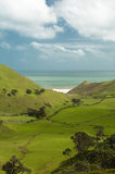 Coastal farmland. WS: Lush green coastal farmland of clean green New Zealand Royalty Free Stock Photo