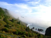Coastal fog on the hillside Stock Photos