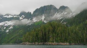 Coastal Fog in the Kenai Royalty Free Stock Photo