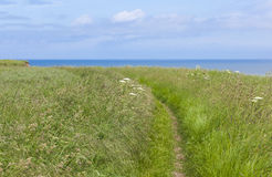 Coastal footpath at Flamborough Head, Yorkshire, UK Royalty Free Stock Photography