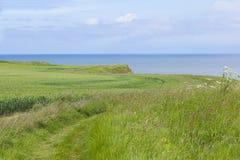 Coastal footpath at Flamborough Head, Yorkshire, UK Stock Images