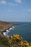 Coastal footpath from St Ives towards Lands End. Coastal footpatch in Corwall, england Royalty Free Stock Photography