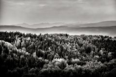 Coastal Forests - Westwards. A B&W landscape looking west towards Prince Rupert at the west coast of BC, Canada stock image