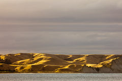 Coastal grassland dry and yellow from drought, NZ Royalty Free Stock Photos