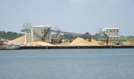 Coastal gravel plant Stock Photo