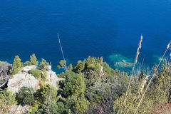 Coastal green vegetation and turquoise Mediterranean water Royalty Free Stock Images