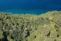Coastal green vegetation and turquoise Mediterranean water Stock Images