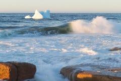 Coastal Icebergs Royalty Free Stock Photography