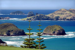 Coastal Islands. With Norfolk pines in foreground royalty free stock photo