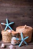 Coastal  items on  aged wooden background. Royalty Free Stock Image