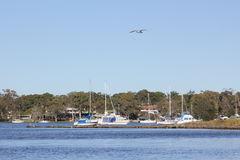 Coastal lake and boats scenery. Recreation area Lake Macquarie on a clear blue day with boats and houses in the background (Australia&#x29 Stock Images