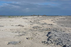 Coastal landscape atoll Tuamotu French Polynesia Stock Photo
