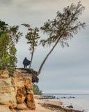 Coastal landscape at the Baltic sea, Latvia Stock Photography