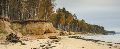 Coastal landscape at the Baltic sea, Latvia Royalty Free Stock Images