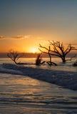 Coastal Landscape Botany Bay Edisto Island South Carolina Royalty Free Stock Image