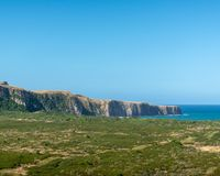 Coastal landscape with hills, trees and swamp land royalty free stock images