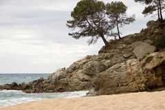 Coastal landscape of Lloret de Mar. Lloret de Mar has excellent sandy beaches grainy royalty free stock photos