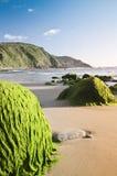 Coastal landscape Stock Photography
