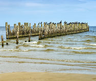 Coastal landscape with old broken pier, Baltic Sea Royalty Free Stock Images