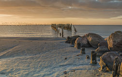 Coastal landscape with old broken pier and migrating birds, Baltic Sea Stock Images