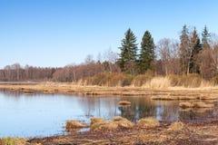 Coastal landscape of Saimaa lake in autumn Royalty Free Stock Images