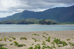 Coastal landscape from sandy beach New Caledonia Royalty Free Stock Image
