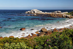 Coastal Landscape in South Africa Stock Images