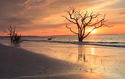 Charleston SC Coastal Golden Sunrise  Royalty Free Stock Photography