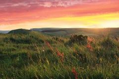 Coastal landscape at sunset Royalty Free Stock Image