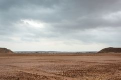Coastal lowland. With sand and trees in the back Stock Images