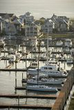 Coastal marina. Royalty Free Stock Images
