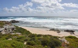 Coastal Meditation Royalty Free Stock Photography