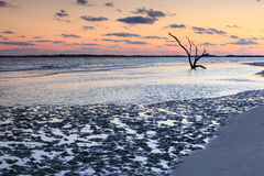 Coastal Mud Flats Folly Beach South Carolina Royalty Free Stock Photography