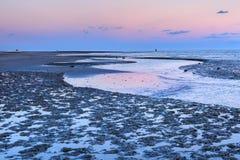 Coastal Mud Flats South Carolina Stock Photography