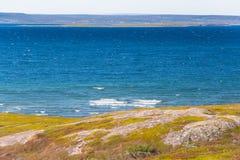 Coastal landscape in summer Stock Image