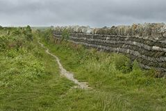 Coastal path alongside a Cornish stone fence royalty free stock photos