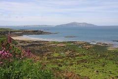 The coastal path by Church Bay Royalty Free Stock Photography