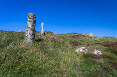 Coastal path in cornwall with old lichen post Royalty Free Stock Image