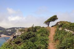 Coastal Path, South Devon. This is a section of the coastal path between East Portlemouth and Gara Rock near Salcombe in Devon, southern England, UK, with the stock images