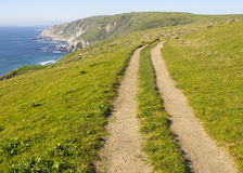 Coastal Path, Tomales Point Royalty Free Stock Photos