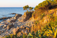 Coastal path tourist in Costa Brava Stock Images
