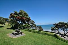 Coastal Picnic Spot. A picnic bench next to the coast Royalty Free Stock Photography