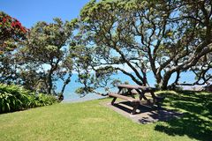 Coastal Picnic Spot. A picnic bench next to the coast and under some trees stock photography