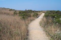 Coastal Prairie Trail at Bodega Head Royalty Free Stock Images