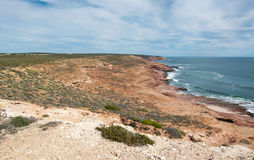 Coastal Red Bluff Views. Elevated view from the Red Bluff overlooking the red sandstone coast line with native dune plants and turquoise Indian Ocean waters Stock Images
