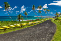 Coastal road lined with palm trees, overlooking tropical ocean, Royalty Free Stock Photo