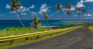 Coastal road lined with palm trees, overlooking tropical ocean, Samoa stock footage