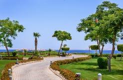 Coastal road on a tropical resort Stock Image